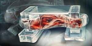 3d printing + human muscle = biobot
